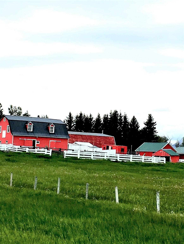 farmer's house (1)